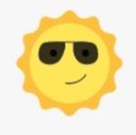 Enhanced Privacy and Sun Glare